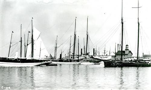 Newport Harbor, Long Wharf in Background