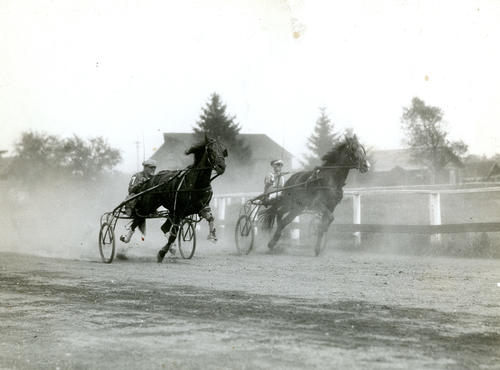 Harness Racing at Roger Williams Park