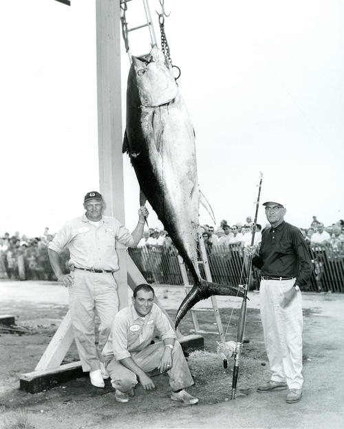13th U.S. Atlantic Tuna Tournament