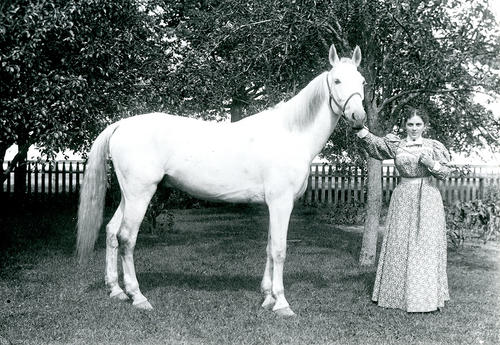Wilcox Farm, Brown's Lane, Portsmouth [Lottie Wilcox with horse]