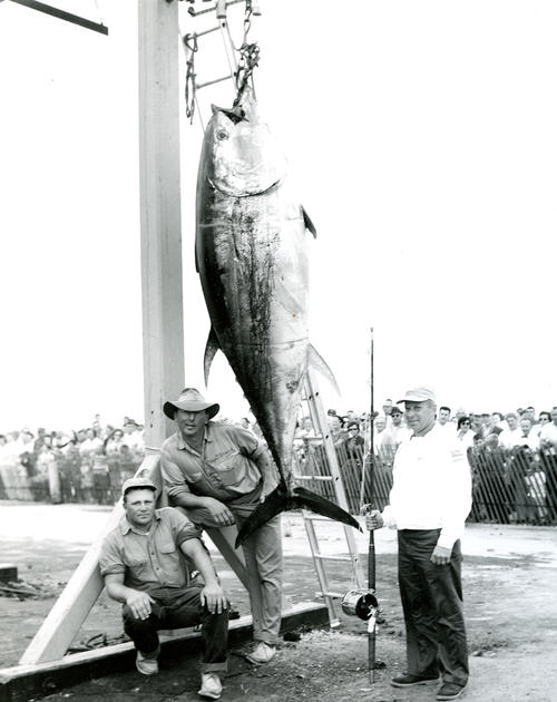 United States Atlantic Tuna Tournament