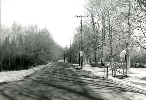 East Shore Road, Jamestown; North from North Road