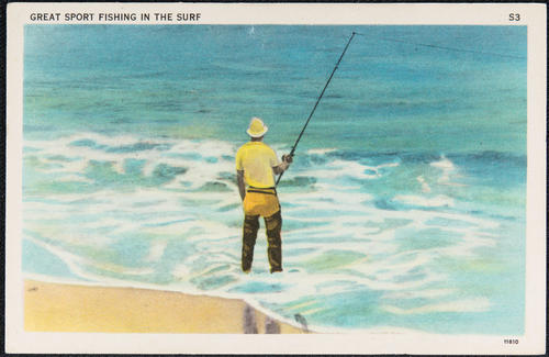 Great sport fishing in the surf