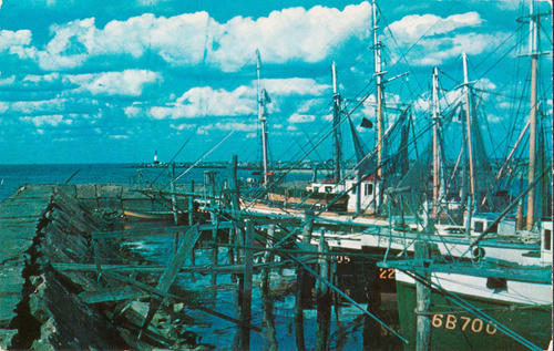 Fishing Fleet in Port