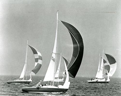 Participating in Yacht Races