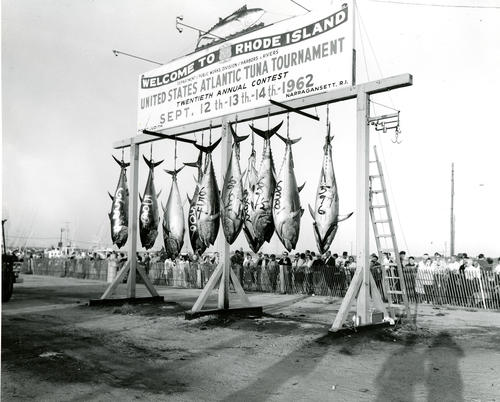 U.S. Atlantic Tuna Tournament