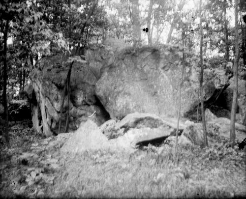 Boulder in a woodland area